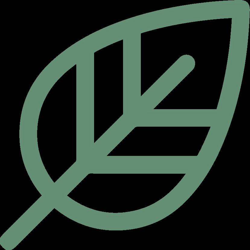 produits écologiques et zéro déchet