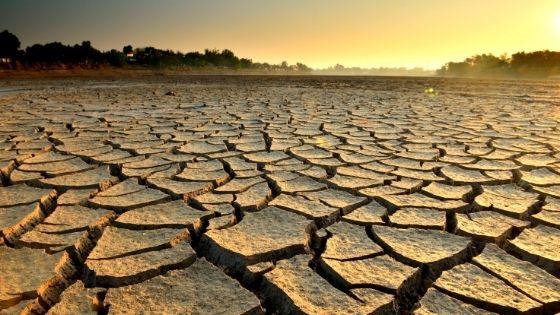 Economies d'eau : comment agir pendant la sécheresse ?